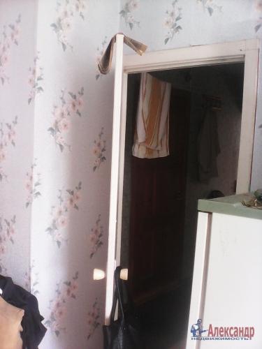 3-комнатная квартира (50м2) на продажу по адресу Плодовое пос.— фото 3 из 18