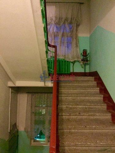 3-комнатная квартира (63м2) на продажу по адресу Колпино г., Карла Маркса ул., 10— фото 24 из 24