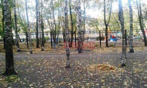 3-комнатная квартира (59м2) на продажу по адресу Светлановский просп., 46— фото 3 из 17