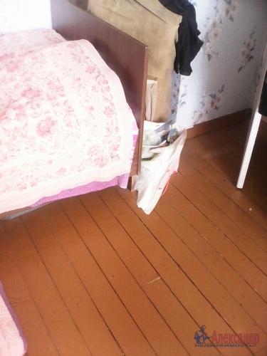 3-комнатная квартира (50м2) на продажу по адресу Плодовое пос.— фото 4 из 18