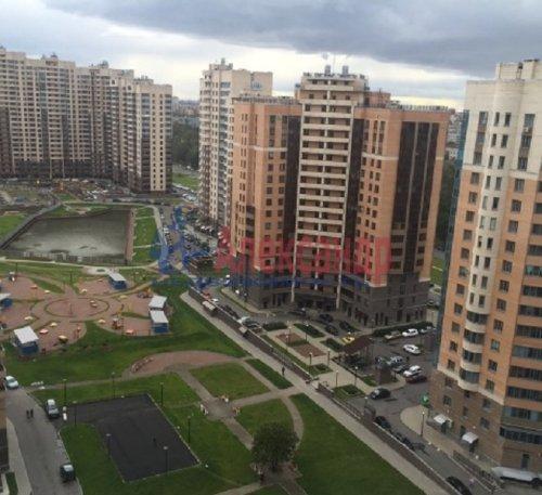 1-комнатная квартира (47м2) на продажу по адресу Бутлерова ул., 11— фото 4 из 9