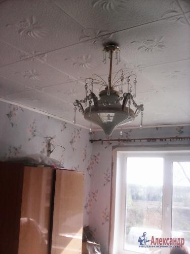 3-комнатная квартира (50м2) на продажу по адресу Плодовое пос.— фото 5 из 18