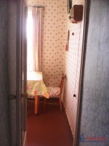 3-комнатная квартира (50м2) на продажу по адресу Плодовое пос.— фото 6 из 18