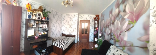 2-комнатная квартира (53м2) на продажу по адресу Ударников пр., 38— фото 4 из 10