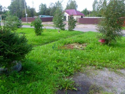 3-комнатная квартира (74м2) на продажу по адресу Снегиревка дер., Майская ул., 1— фото 33 из 38