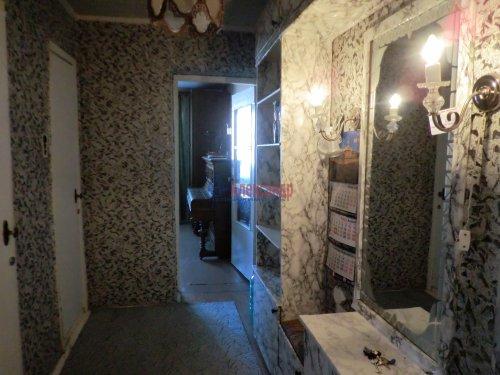 2-комнатная квартира (49м2) на продажу по адресу Стрельна г., Орловская ул., 4— фото 4 из 5