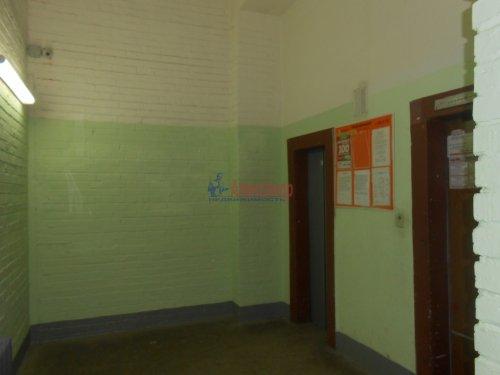 1-комнатная квартира (33м2) на продажу по адресу Просвещения пр., 35— фото 4 из 10