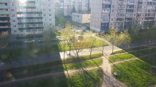 1-комнатная квартира (47м2) на продажу по адресу Колпино г., Московская ул., 6— фото 12 из 12