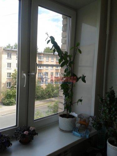 2-комнатная квартира (48м2) на продажу по адресу Ломоносов г., Александровская ул., 23— фото 8 из 10