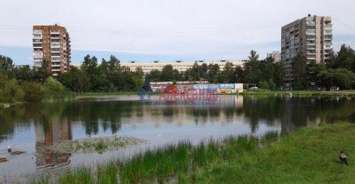 1-комнатная квартира (31м2) на продажу по адресу Учительская ул., 12— фото 11 из 12