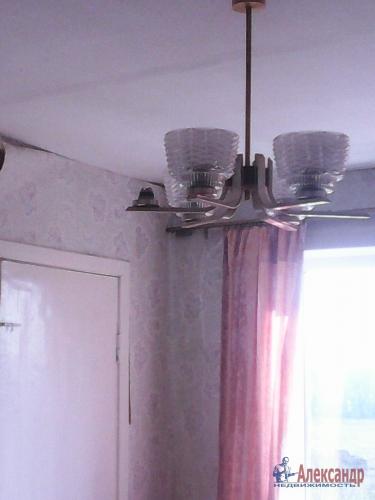 3-комнатная квартира (50м2) на продажу по адресу Плодовое пос.— фото 12 из 18