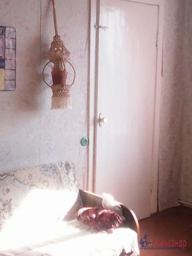 3-комнатная квартира (50м2) на продажу по адресу Плодовое пос.— фото 13 из 18