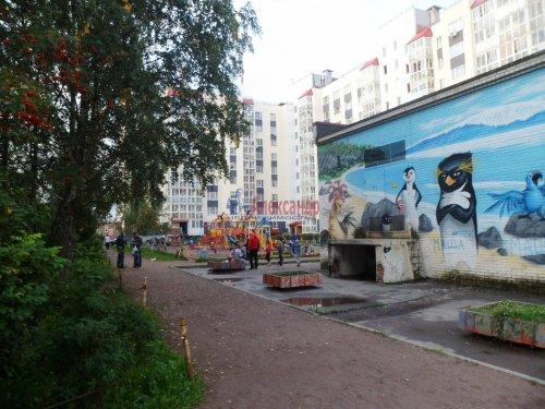 Комната в 3-комнатной квартире (62м2) на продажу по адресу Старая дер., Верхняя ул., 12— фото 18 из 18