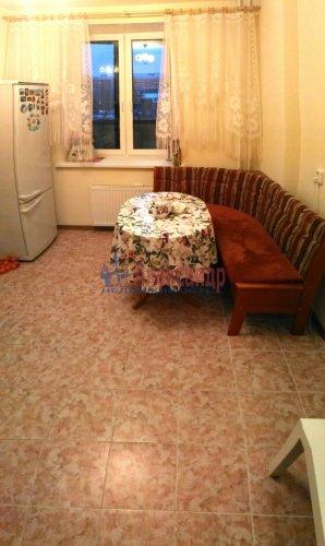 1-комнатная квартира (47м2) на продажу по адресу Новое Девяткино дер., Арсенальная ул., 2— фото 4 из 16