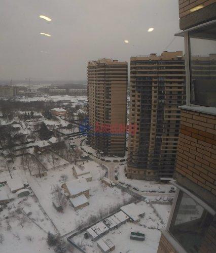 1-комнатная квартира (36м2) на продажу по адресу Мурино пос., Новая ул., 7— фото 17 из 18