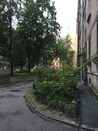 2-комнатная квартира (54м2) на продажу по адресу Всеволода Вишневского ул., 1— фото 4 из 4