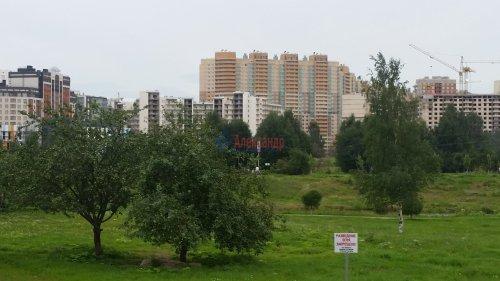 3-комнатная квартира (91м2) на продажу по адресу Кудрово дер., Областная ул., 1— фото 6 из 24