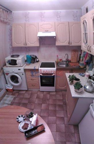 2-комнатная квартира (50м2) на продажу по адресу Мурино пос., Оборонная ул., 2— фото 6 из 15