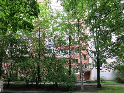 Комната в 4-комнатной квартире (97м2) на продажу по адресу Энгельса пр., 63— фото 8 из 12