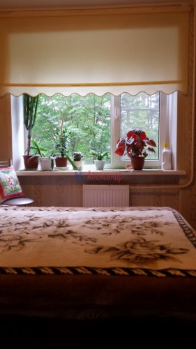 Комната в 4-комнатной квартире (760м2) на продажу по адресу Сестрорецк г., Борисова ул., 9— фото 4 из 9