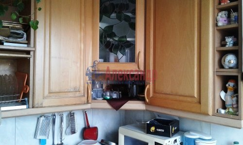 3-комнатная квартира (59м2) на продажу по адресу Светлановский просп., 46— фото 9 из 17