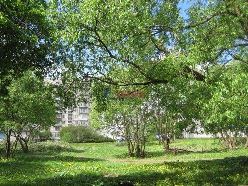 1-комнатная квартира (31м2) на продажу по адресу Волхов г., Авиационная ул., 40— фото 2 из 8