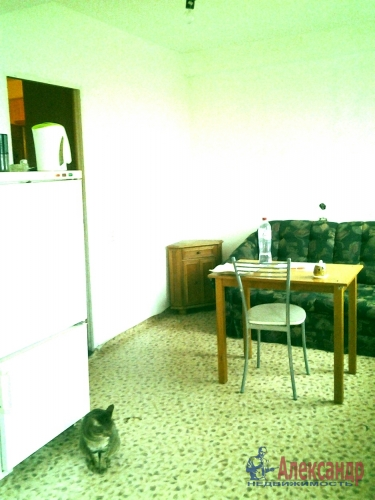 1-комнатная квартира (46м2) на продажу по адресу Авиаконструкторов пр., 20— фото 5 из 11