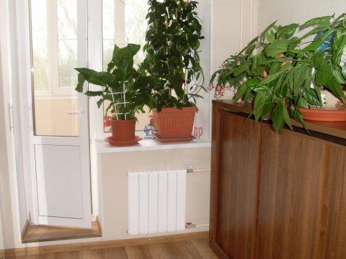 1-комнатная квартира (55м2) на продажу по адресу Сосново пос., Никитина ул.— фото 9 из 25