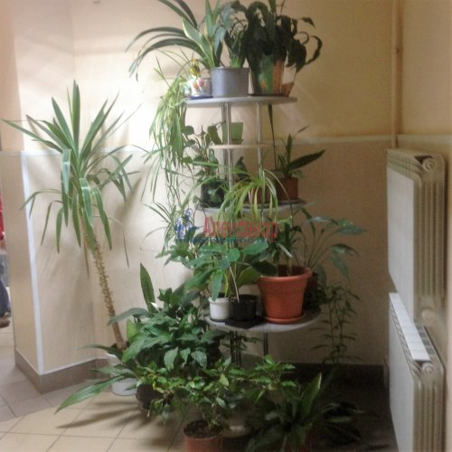 1-комнатная квартира (36м2) на продажу по адресу Комендантский пр., 42— фото 14 из 14
