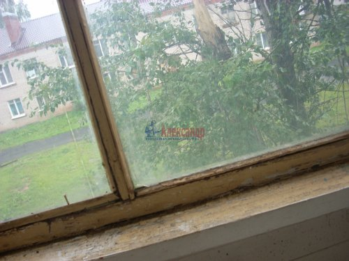 2-комнатная квартира (54м2) на продажу по адресу Ям-Тесово дер., 9— фото 28 из 44