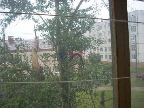2-комнатная квартира (54м2) на продажу по адресу Ям-Тесово дер., 9— фото 29 из 44