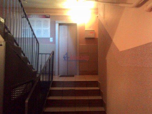 3-комнатная квартира (59м2) на продажу по адресу Авангардная ул., 20— фото 3 из 14