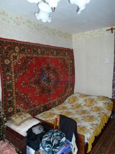 1-комнатная квартира (33м2) на продажу по адресу Раздолье пос., Центральная ул., 3— фото 2 из 13
