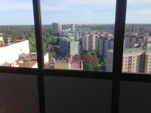 1-комнатная квартира (33м2) на продажу по адресу Всеволожск г., Колтушское шос., 44— фото 3 из 5