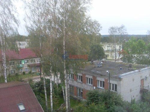 1-комнатная квартира (55м2) на продажу по адресу Сосново пос., Никитина ул.— фото 12 из 25