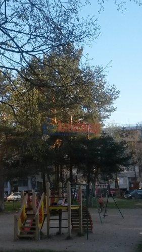 3-комнатная квартира (66м2) на продажу по адресу Кировск г., Северная ул., 3— фото 11 из 13