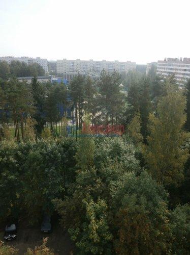 3-комнатная квартира (65м2) на продажу по адресу Сертолово г., Молодцова ул., 5— фото 3 из 11