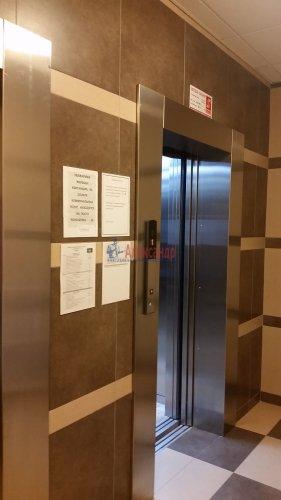 3-комнатная квартира (91м2) на продажу по адресу Кудрово дер., Областная ул., 1— фото 17 из 24