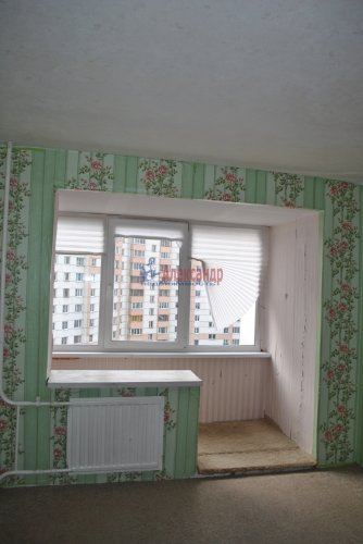 1-комнатная квартира (41м2) на продажу по адресу Шушары пос., Пушкинская ул., 3— фото 2 из 15