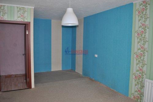 1-комнатная квартира (41м2) на продажу по адресу Шушары пос., Пушкинская ул., 3— фото 4 из 15