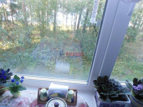 2-комнатная квартира (48м2) на продажу по адресу Лахденпохья г., Трубачева ул., 1— фото 8 из 16