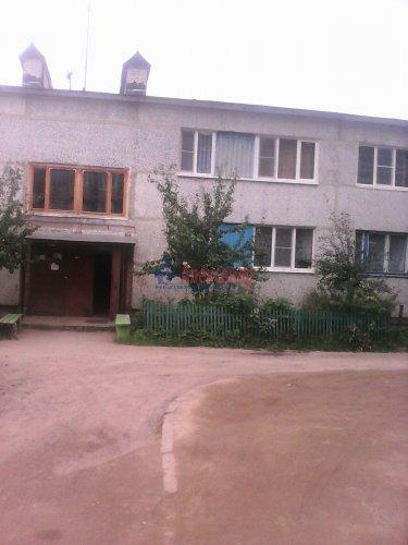 2-комнатная квартира (43м2) на продажу по адресу Плодовое пос., Центральная ул., 3— фото 13 из 15
