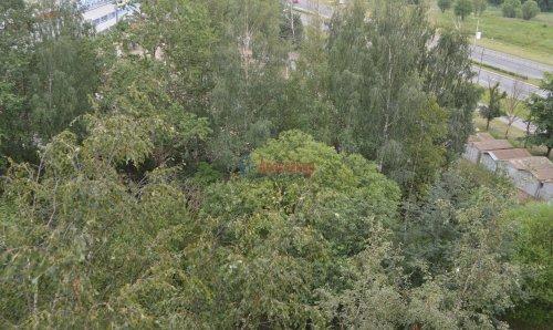 3-комнатная квартира (61м2) на продажу по адресу Лужская ул., 4— фото 7 из 8