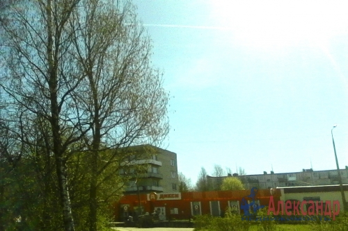 1-комнатная квартира (30м2) на продажу по адресу Оржицы дер., 13— фото 15 из 15