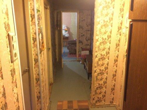2-комнатная квартира (46м2) на продажу по адресу Каменногорск г., Ленинградское шос., 86— фото 4 из 12
