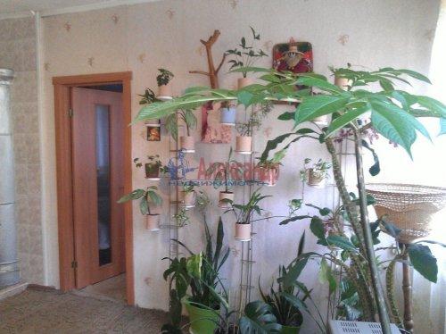 2-комнатная квартира (39м2) на продажу по адресу Сосново пос., Механизаторов ул.— фото 5 из 7