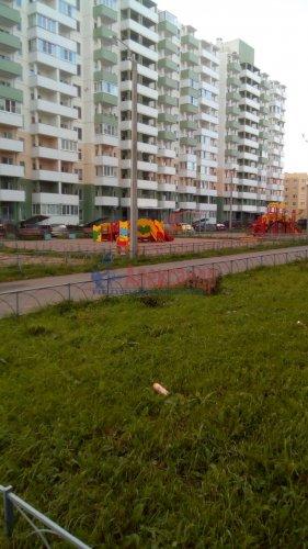 2-комнатная квартира (48м2) на продажу по адресу Шушары пос., Московское шос., 284— фото 1 из 11