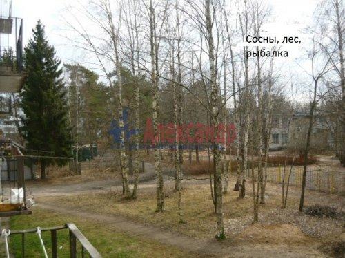 1-комнатная квартира (30м2) на продажу по адресу Победа пос., 2— фото 7 из 8