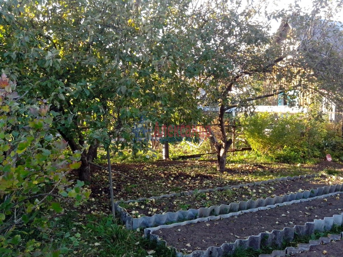 Садовый дом (0м2) на продажу — фото 1 из 1