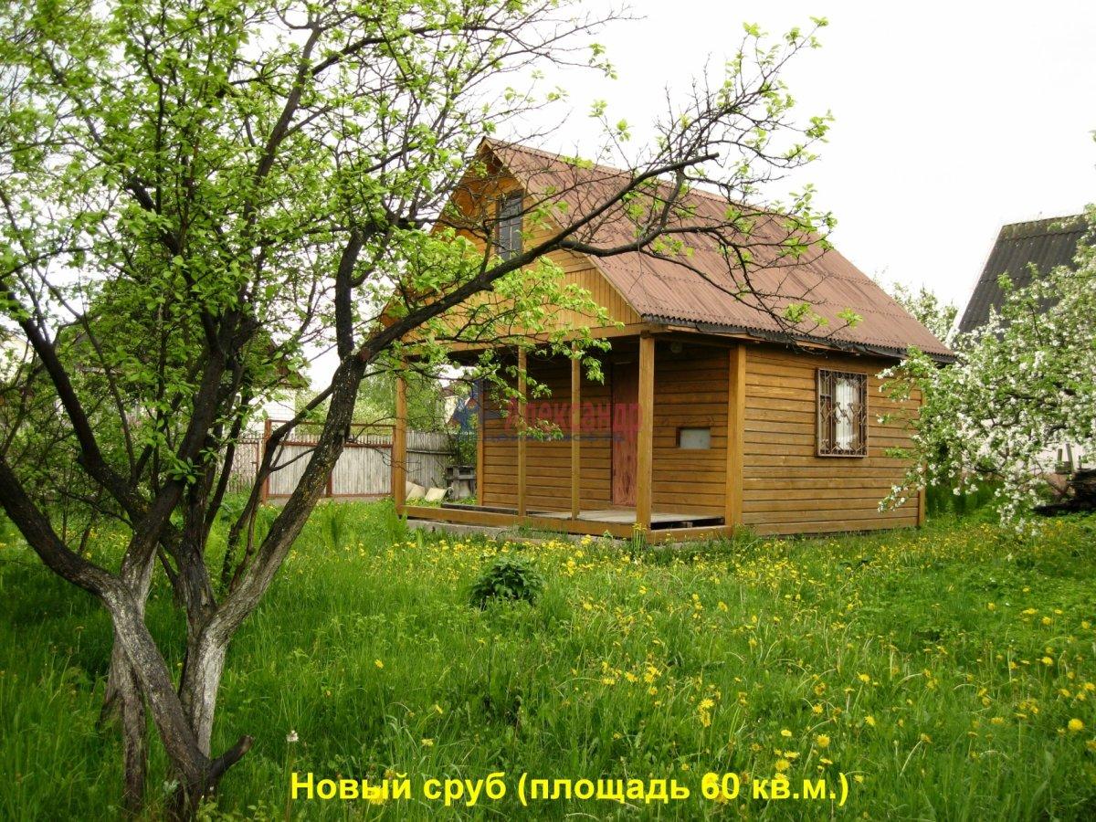 Дачный дом (60м2) на продажу — фото 2 из 12